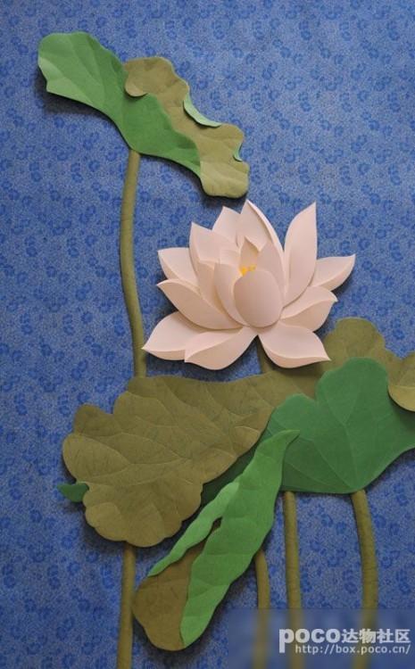 荷花纸雕制作教程