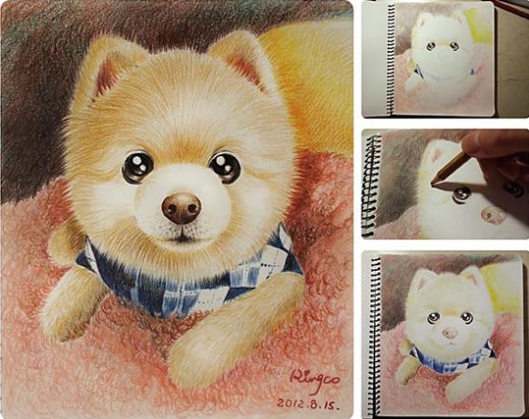 可爱小动物 铅画